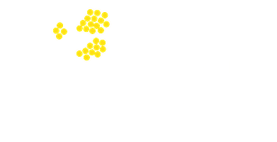 Australian Women's Club London